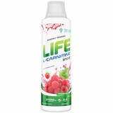 Life L-Carnitine 3100 Tree of Life 500 мл.