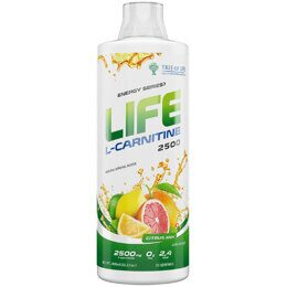 Life L-Carnitine Tree of Life 1000 мл.